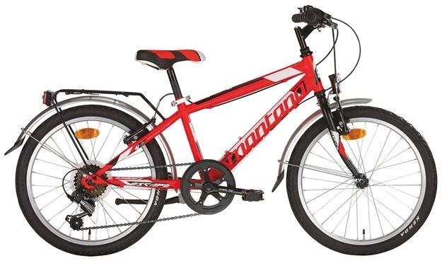 Bicicletta da bambino 20″ cambio posteriore